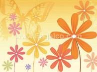 زهرة البابونج الصفراء-3385