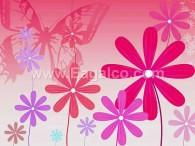 زهرة البابونج الحمراء-3387